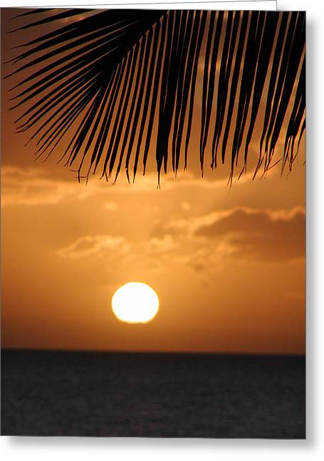 Palm Sunset Hawaii Greeting Card by Dustin K Ryan