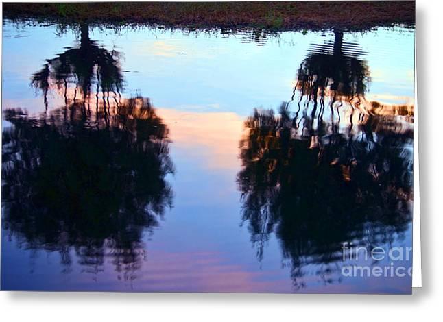 Palm Sunset Reflection Greeting Card