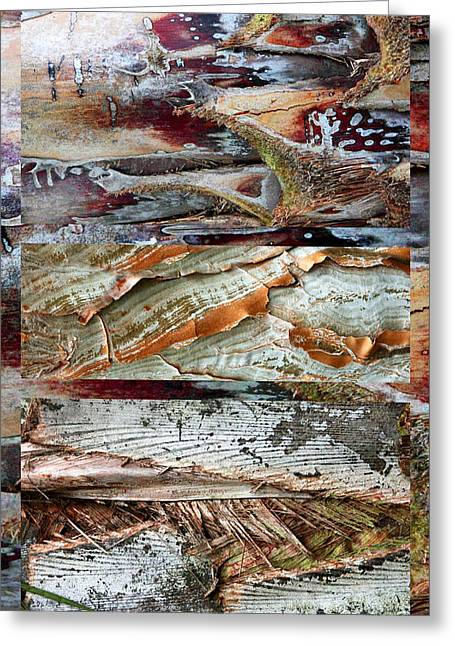 Palm Tree Bark Design Greeting Card by Jessica Jenney