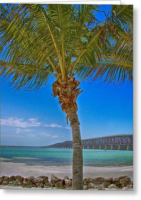 Greeting Card featuring the photograph Palm Tree Bridge And Sand by Paula Porterfield-Izzo