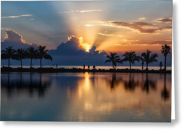 Palm Tree Framed Sunrise Greeting Card by Andres Leon