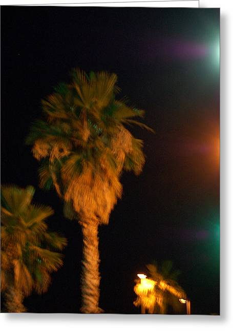 Palm Tree Glow Greeting Card