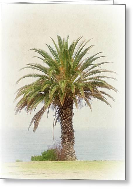 Palm Tree In Coastal California In A Retro Style Greeting Card