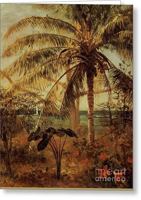 Palm Tree, Nassau, 1892  Greeting Card by Albert Bierstadt