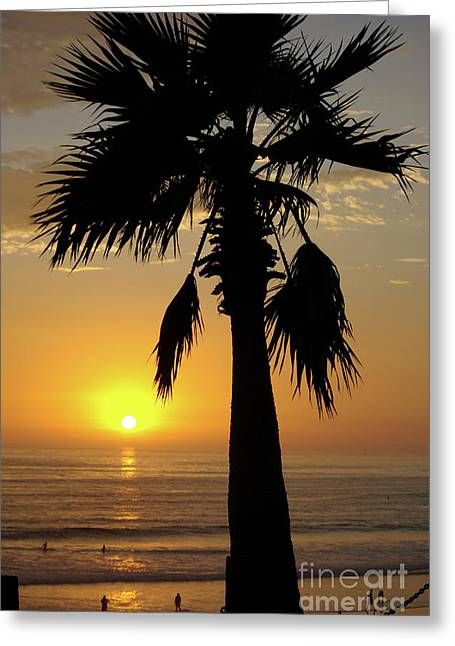 Palm Tree Sunset Greeting Card by Jim and Emily Bush