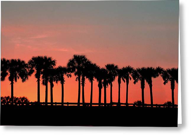 Greeting Card featuring the photograph Palm Tree Sunset by Joel Witmeyer