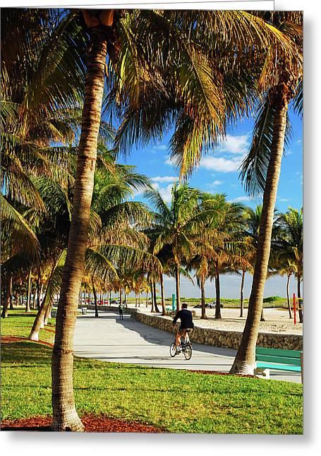 Palm Tree Way Greeting Card by James Kirkikis