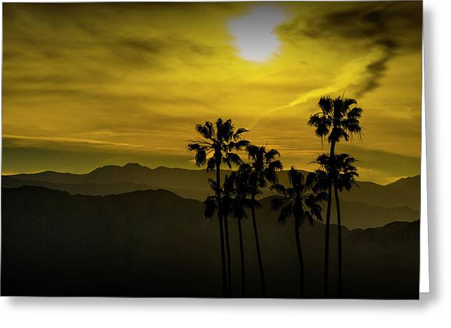 Greeting Card featuring the photograph Palm Trees At Sunset With Mountains In California by Randall Nyhof