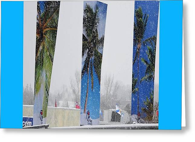 Palm Trees In Snowstorm Greeting Card by Lj White
