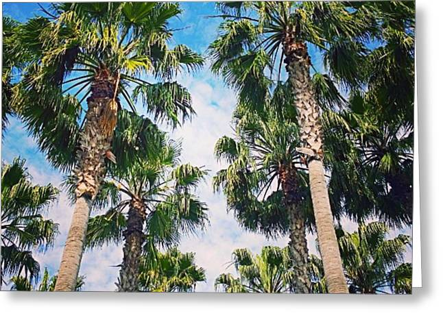 #palm #trees Just Make Me #smile Greeting Card