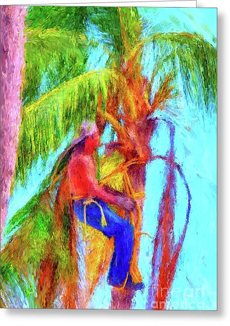 Palm Trimmer Greeting Card by Gerhardt Isringhaus