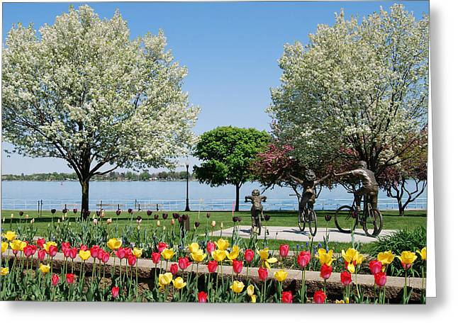 Palmer Park In Spring Greeting Card