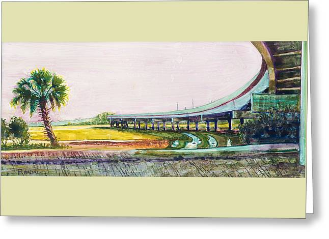 Palmetto Flyover Greeting Card