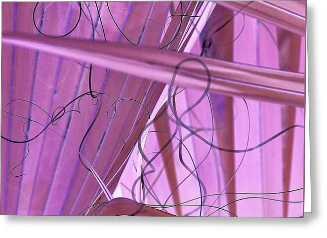 Lines, Curves And Highlights Greeting Card
