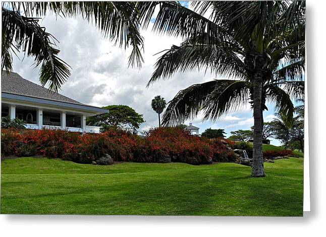 Palms And Kahili Golf Course Clubhouse  Greeting Card by Kirsten Giving