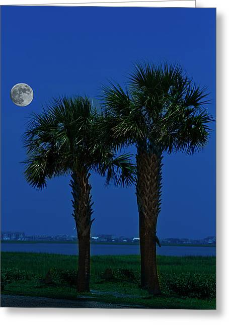Greeting Card featuring the photograph Palms And Moon At Morse Park by Bill Barber
