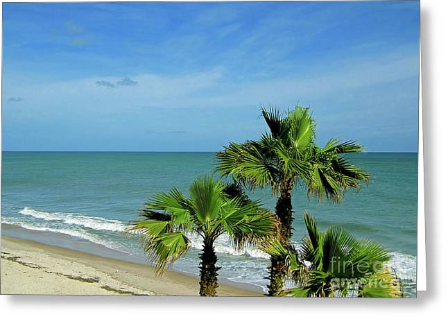 Palms At Vero Beach Greeting Card