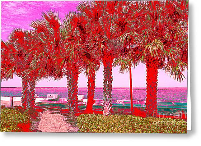 Palms In Red Greeting Card