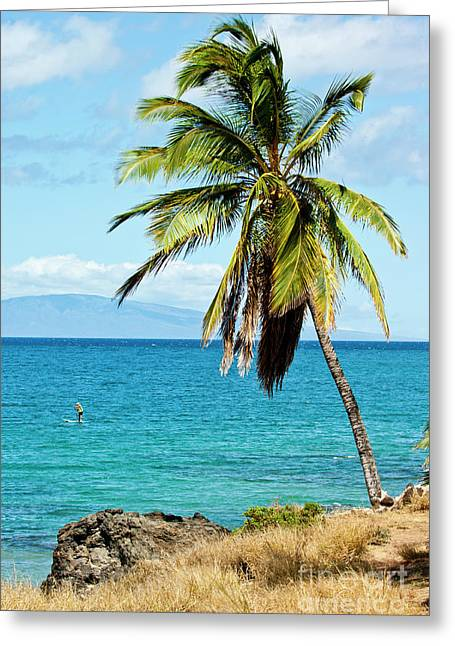 Greeting Card featuring the photograph Palms On Hawaiian Beach 12 by Micah May