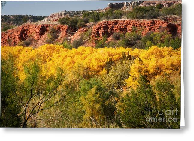 Palo Duro Canyon Fall Colors Greeting Card by Fred Lassmann