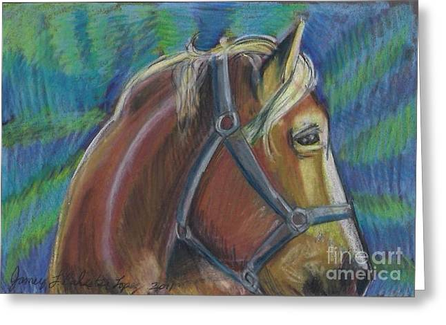 Palomino  Drawing Greeting Card by Jamey Balester