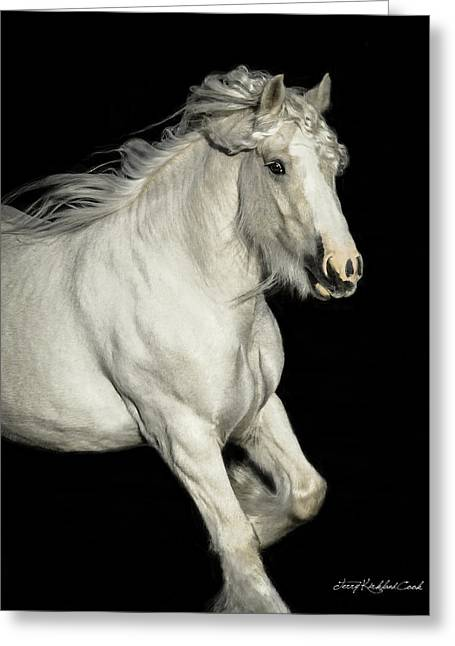 Palomino Portrait Greeting Card by Terry Kirkland Cook