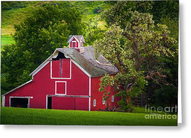 Palouse Barn Number 9 Greeting Card by Inge Johnsson