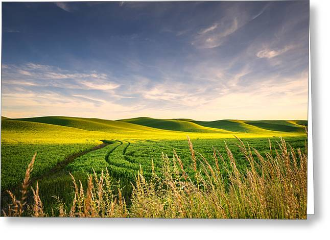 Greeting Card featuring the photograph Palouse Bounty by Dan Mihai