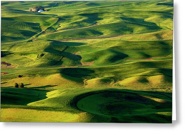 Rolling Hills Greeting Cards - Palouse Contours Greeting Card by Mike  Dawson