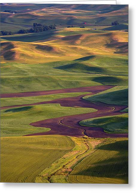 Palouse Hills Greeting Card