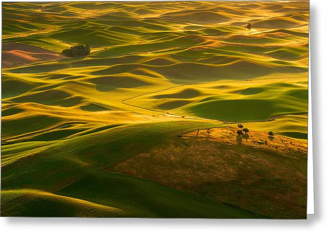 Greeting Card featuring the photograph Palouse Swells by Dan Mihai