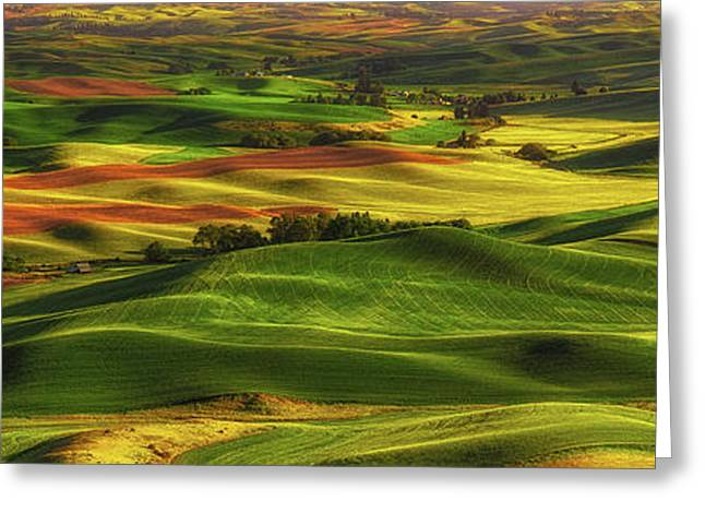 Palouse Greeting Card