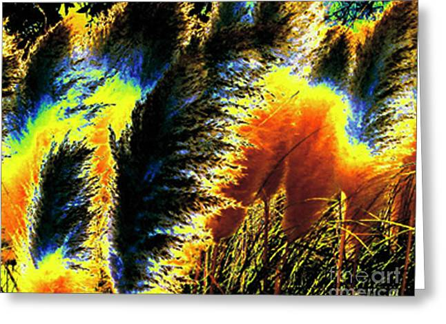 Greeting Card featuring the photograph Pampas Grass 1 - Digital Art by Merton Allen