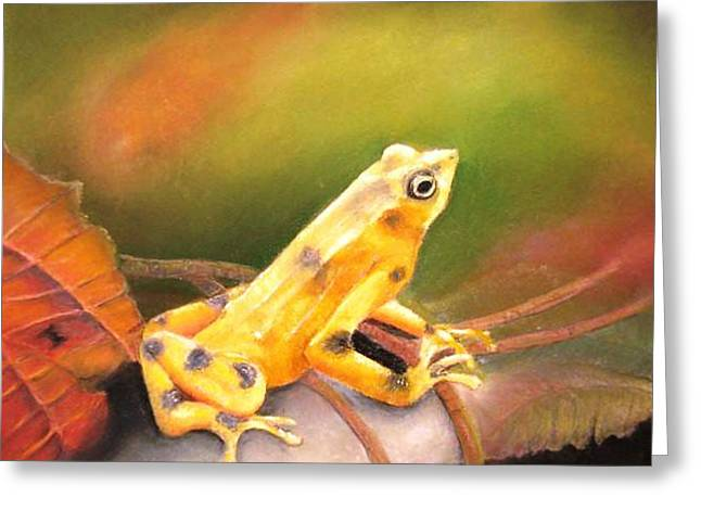 Greeting Card featuring the painting Panamenian Golden Frog by Ceci Watson