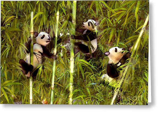 Panda Cubs Greeting Card by Methune Hively
