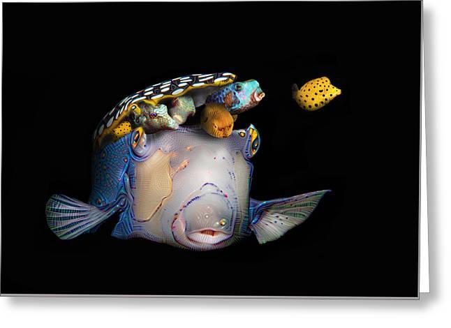 Pandora's Box Fish Greeting Card by Dray Van Beeck