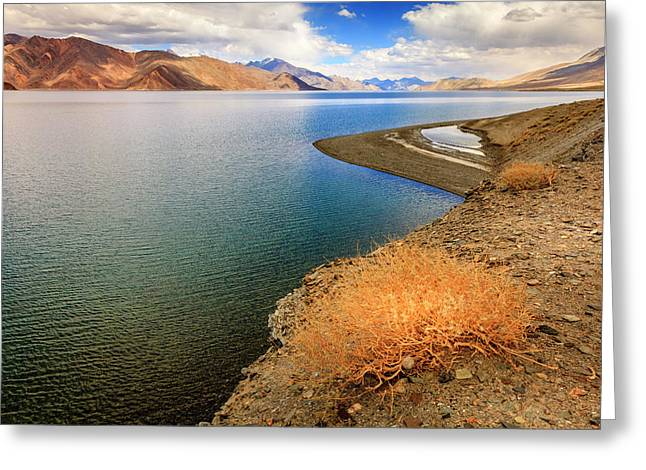Greeting Card featuring the photograph Pangong Tso Lake by Alexey Stiop