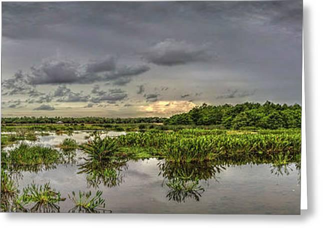 Panorama, Florida Wetlands At Sunset Greeting Card