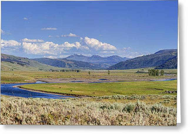Panorama Of The Lamar Valley Greeting Card