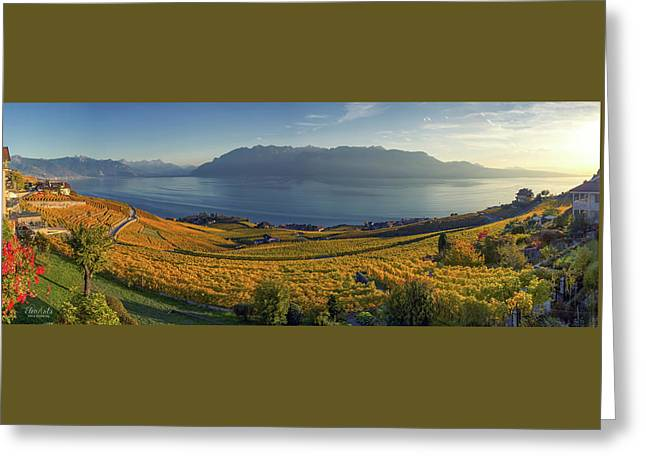 Panorama On Lavaux Region, Vaud, Switzerland Greeting Card