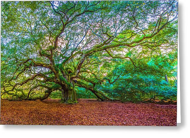 Panoramic Angel Oak Tree Charleston Sc Greeting Card