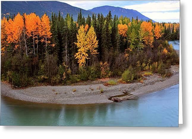 Beautiful Creek Greeting Cards - Panoramic Northern River Greeting Card by Mark Duffy