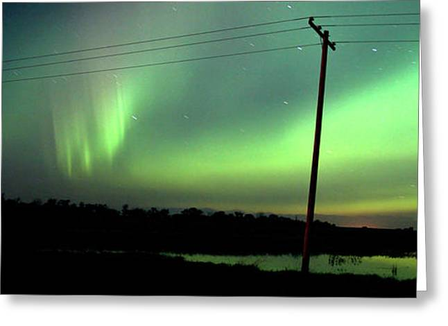 Panoramic Prairie Northern Lights Greeting Card by Mark Duffy