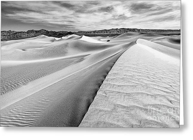 Endless Dunes Greeting Card by Jamie Pham
