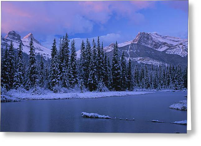 Panoramic View Of Snowcapped Trees Greeting Card