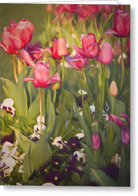 Greeting Card featuring the photograph Pansies And Tulips by Lana Trussell