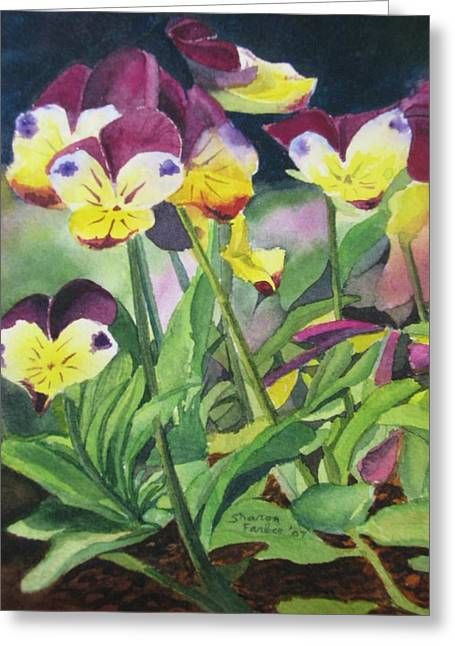 Pansies Greeting Card by Sharon Farber