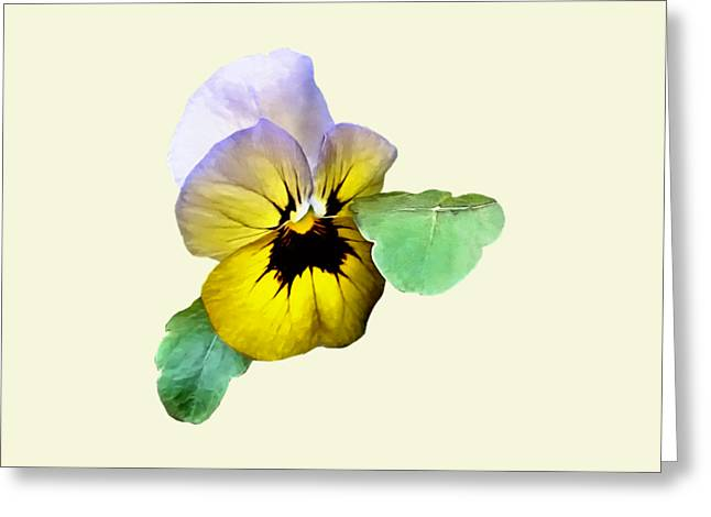 Pansy Saluting Greeting Card by Susan Savad