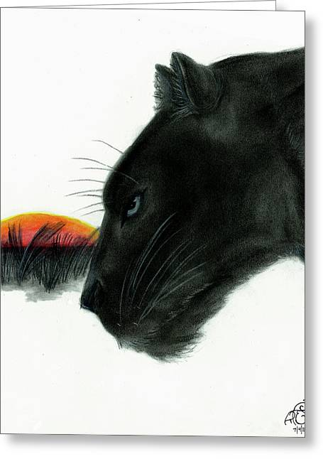 Panther At Dusk Greeting Card by Tiphanie Erickson