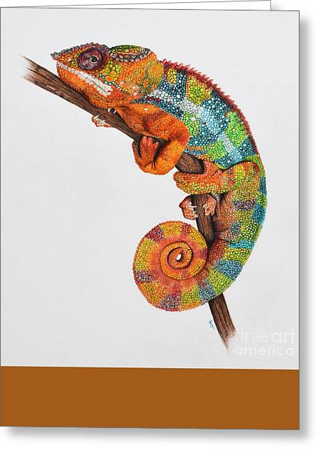 Panther Chameleon Greeting Card by Biophilic Art